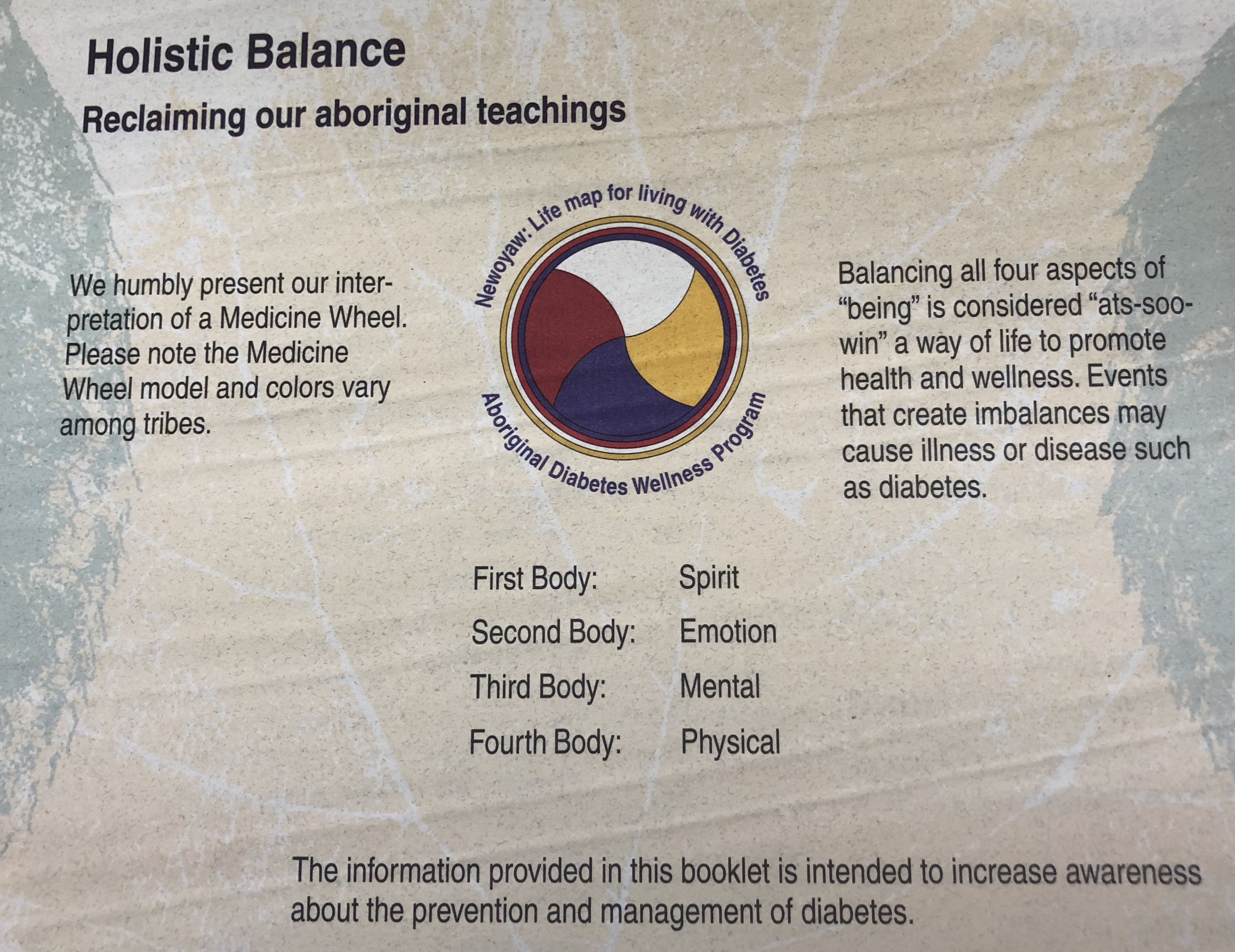 Reflecting on my Time at the Indigenous Wellness Clinic